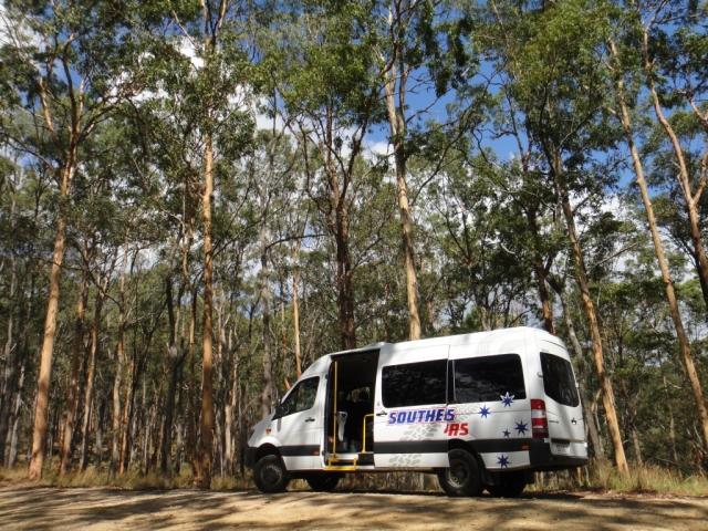 20160121-Australia-Gold Coast-Rainforest Tours-1
